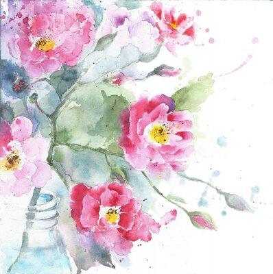 Obraz Růže v akvarelu láhve malování izolovaných na bílém blahopřání