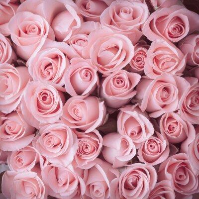 Obraz růžové růže květ kytice vinobraní pozadí