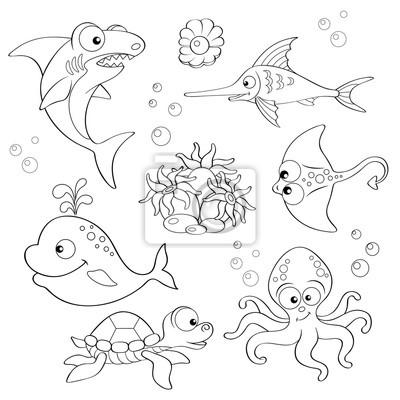 Sada Roztomilych Kreslenych Morskych Zivocichu Cerna A Bila Obrazy