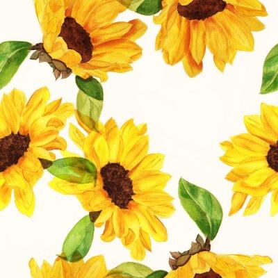 Obraz Seamless akvarel slunečnice vzor na bílém pozadí