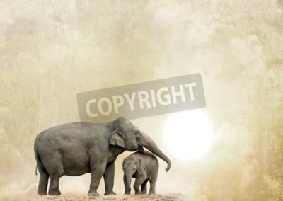 Obraz sloni na pozadí grunge
