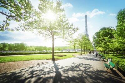 Obraz slunečné ráno a Eiffelova věž, Paříž, Francie