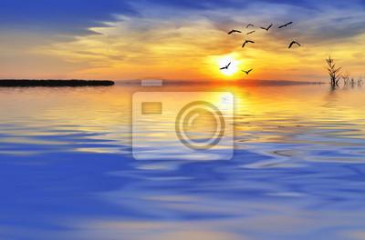 Obraz sobrevolando Las Olas del mar