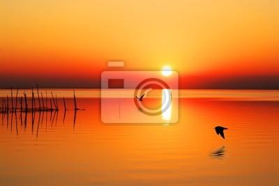 Obraz sol en el mar