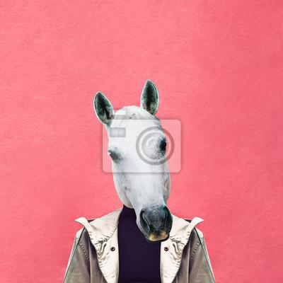 Současná umělecká koláž. Mužský kůň na pozadí růžové zdi. Jeans oblečení