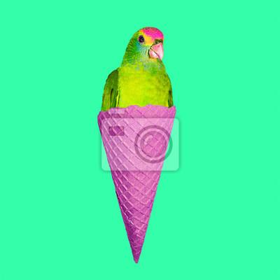 Současné umění koláž. Parrot Zmrzlina. Minimální projekt Funny Fast food