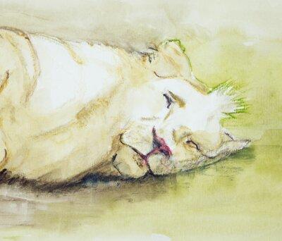Obraz Spící lev. Poklepáváním technika je u okrajů dává změkčující účinek v důsledku drsnosti změněné povrchu papíru.