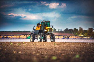 Obraz Stroj na sklizeň zemědělských strojů kombajnů zralého zralého pšeničného pole
