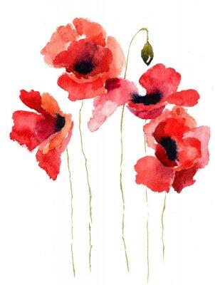 Obraz Stylizované mák květiny ilustrace