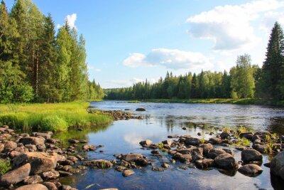 Obraz Summer river