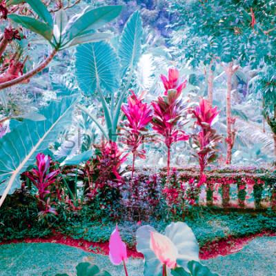 Obraz Surrealistické barvy fantastické tropické zahrady s úžasnými rostlinami a květinami