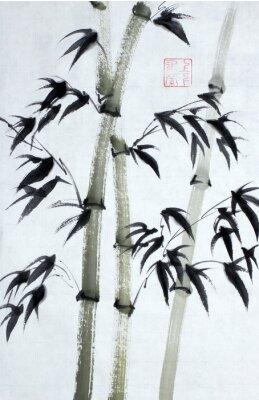 Obraz Světlé bambusové stromy