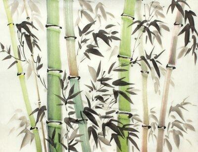 Obraz světlý bambusový les
