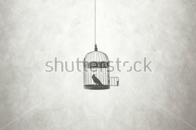 Obraz svoboda minimální koncepce, pták v otevřené kleci