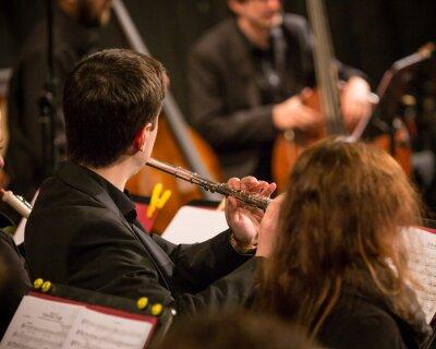 Obraz Symfonický orchestr vede.