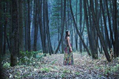 Obraz Ta dívka v temném lese