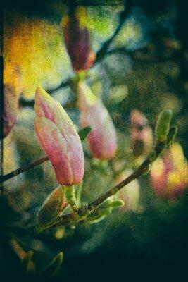 Obraz Talířek Magnolia s uměleckým zpracováním příspěvek