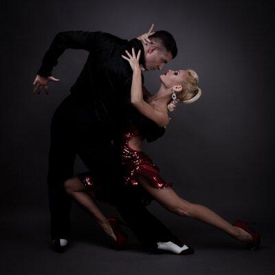 Obraz taneční partneři