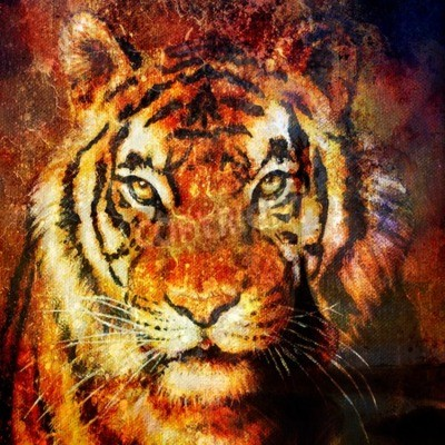 Obraz Tiger hlavy, abstraktní barva pozadí, počítač koláž, oční kontakt