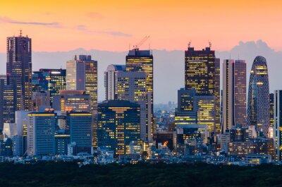Obraz Tokio Skyline at Twilight