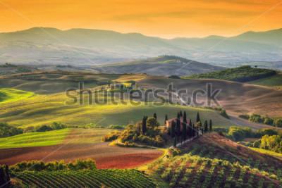 Obraz Toskánsko krajina při východu slunce. Typické pro toskánský statek, kopce, vinice. Itálie