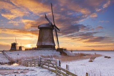 Obraz Tradiční holandské větrné mlýny v zimě při východu slunce