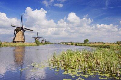 Obraz Tradiční holandské větrné mlýny za slunečného dne na Kinderdijk