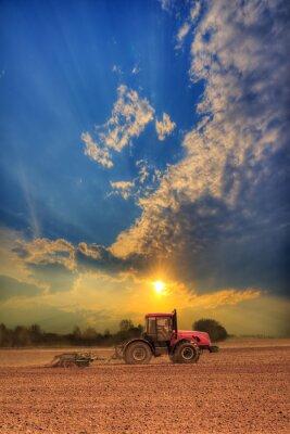 Obraz Traktor v poli