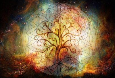 Obraz tree of life symbol and flower of life and space background, yggdrasil.