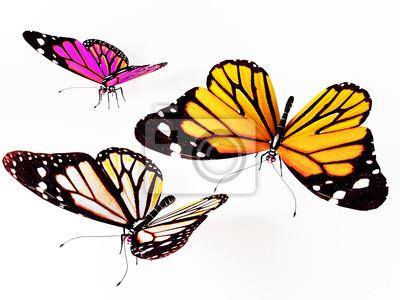 tři motýli
