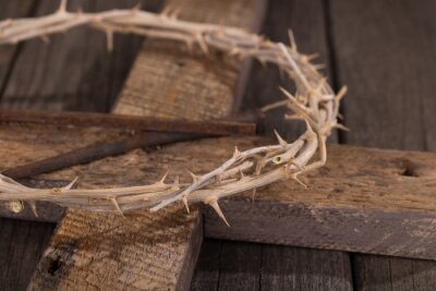 Obraz Trnová koruna na kříži