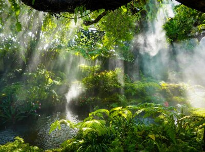 Obraz Tropical jungle with river and sun  beam  and foggy in the garden