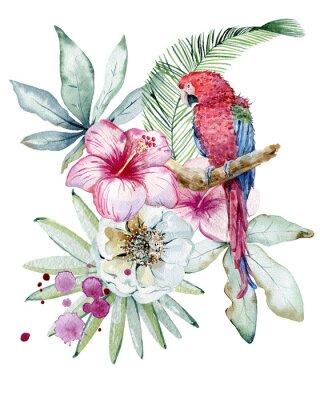 Obraz Tropical watercolor illustration