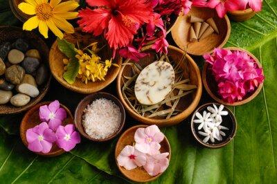 Obraz Tropické květiny Spa set
