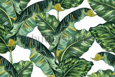 Obraz Tropické palmové listy, džungle list bezproblémové vektorové květinové vzorek pozadí