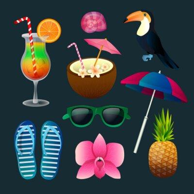 Obraz Tropické prvky sady: Koktejly, květiny, sluneční brýle, Bird, ananas