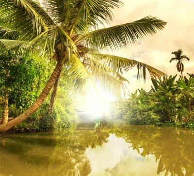 Obraz Tropické řeky
