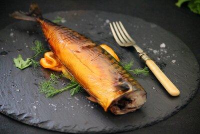 Obraz tučné ryby