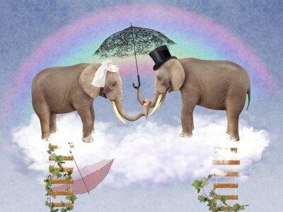 Obraz Two elephants in love with umbrellas.