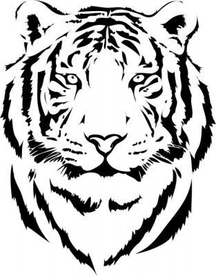 Obraz tygří hlava v černé výkladu 2