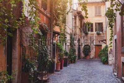 Obraz útulná ulice v Římě, Itálie