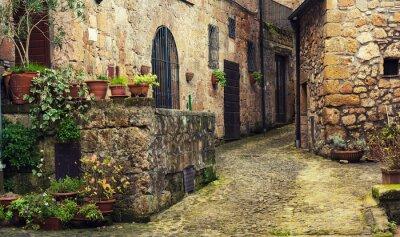 Úzká ulice středověkých starověkých tuf města Sorano se zelenými rostlinami a dlažební kostky, cestovat Itálie pozadí