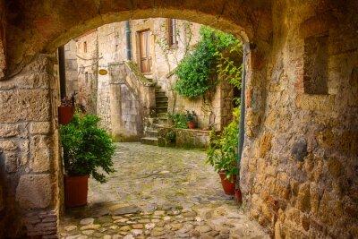 Úzké ulice středověkého centra tuf Sorano s obloukem, zelenými rostlinami a dlažební kostky, cestovat Itálie pozadí