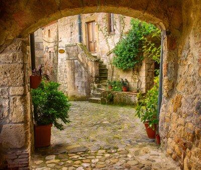 Obraz Úzké ulice středověkého centra tuf Sorano s obloukem, zelenými rostlinami a dlažební kostky, cestovat Itálie pozadí