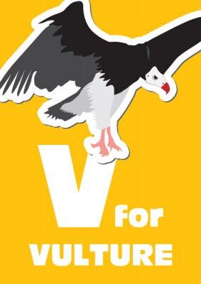 Obraz V pro Vulture, zvířecí abeceda pro děti