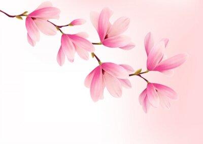 Obraz Valentine pozadí s růžovými květy. Vector.