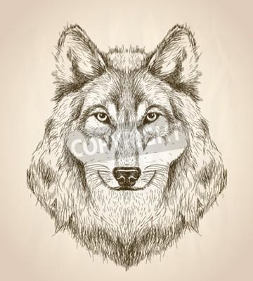 Obraz Vektorové ilustrace skica pohledu zepředu vlčí hlavy, černé a bílé vektoru volně žijících živočichů designu.