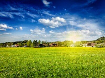 Obraz Venkov pole louka s slunce a modrá obloha
