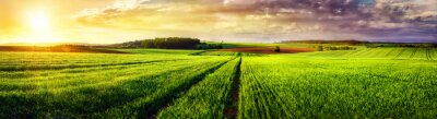 Obraz Venkovská krajina západ slunce panorama