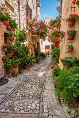 Veranda v malém městečku v Itálii v slunečný den, Umbria